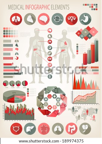 Medical infographics elements. Human body with internal organs. Vector.  - stock vector
