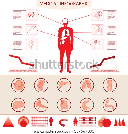 Medical information graphic with human body and internal organs  - stock vector