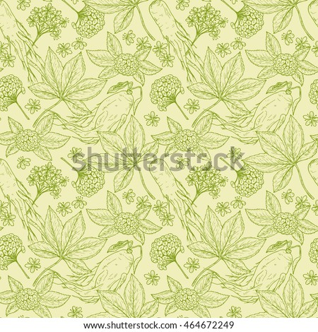 Medicinal plants Seamless pattern. Floral background with Root, Leaves, Berries and Flowers Panax Ginseng. Alternative medicine. Traditional herbal therapy. Vector illustration
