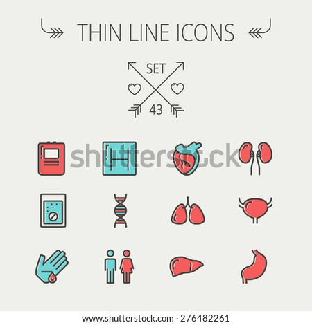 Medicine thin line icon set for web and mobile. Set include-human internal organs, hospital, DNA icons. Modern minimalistic flat design. Vector icon with dark grey outline and offset colour on light - stock vector