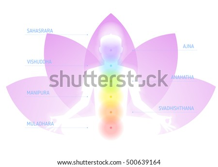 meditation on lotus flower background flat stock vector