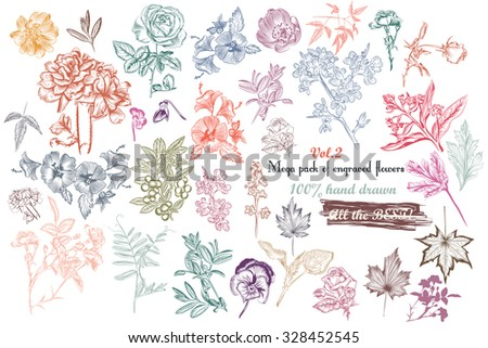 Mega collection of vector  high detailed engraved flowers and leafs 100percent hand drawn - stock vector