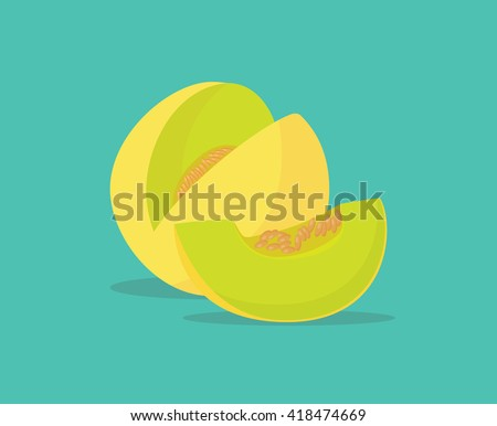 melon single isolated object with vector graphic illustration - stock vector