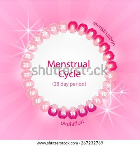 menstrual cycle 101 The menstrual cycle is the regular natural change that occurs in the female reproductive system (specifically the uterus and ovaries) that makes pregnancy possible.