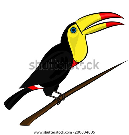 Mexican toucan bird on a branch on a white background - stock vector