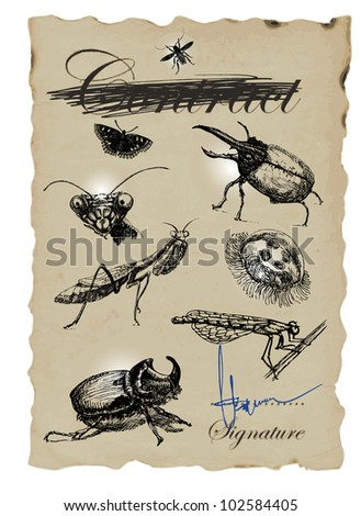 MICRO WORLD - hand-drawn image in vintage style with lots of beetles.