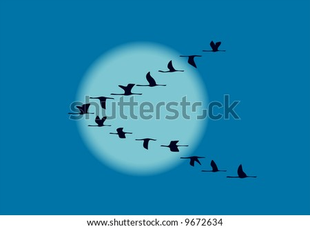 migrating birds in night - stock vector