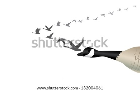 Migrating Geese. EPS 8 vector, grouped for easy editing. No open shapes or paths. - stock vector