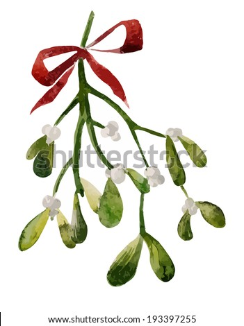 Mistletoe, Christmas, watercolor - stock vector
