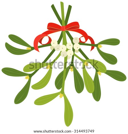 Mistletoe with red bow and curly ribbon, isolated on white background - stock vector