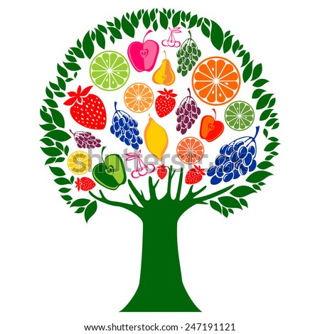 Mixed Fruits tree isolated on white background. Vector illustration - stock vector