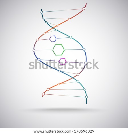model of the DNA molecule. Vector Graphics - stock vector