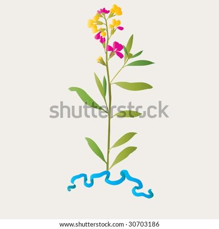 modest flower and silk ribbon - stock vector