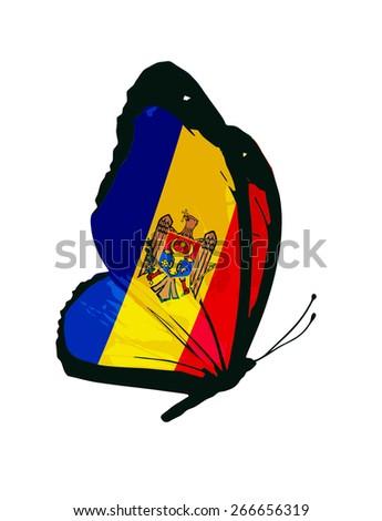 Moldova flag butterfly - vector - stock vector