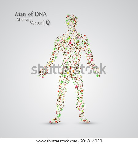 Molecular structure in the form of man,  vector elegant illustration - stock vector