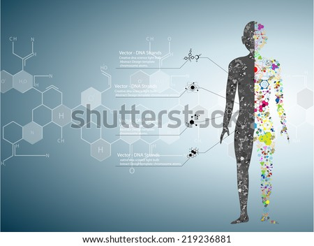 Molecule body concept of the human DNA Eps10  - stock vector