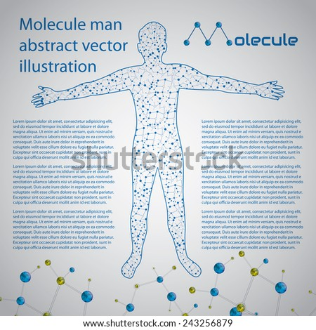 Molecule man human body abstract vector illustration  - stock vector