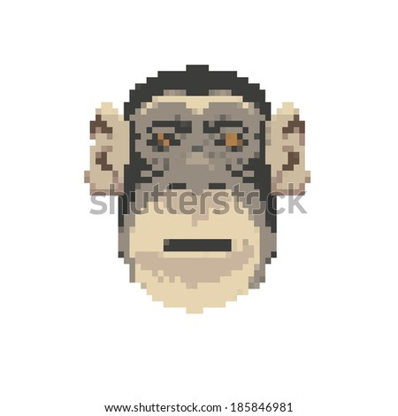 Monkey abstract isolated on a white backgrounds, vector illustration