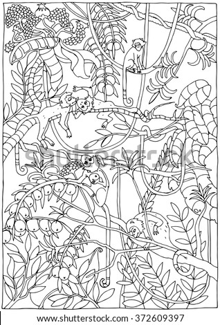 Monkey Jungle Coloring Page Stock