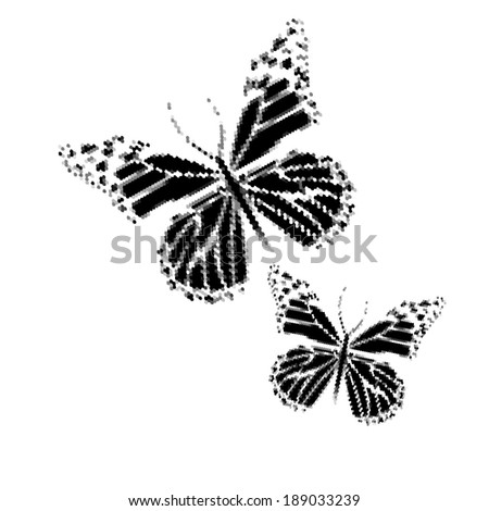 monochrome butterfly. Vector - stock vector