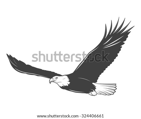 Monochrome eagle on a white background. Vector EPS8 illustration.  - stock vector