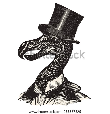 Monsieur Dodo - stock vector
