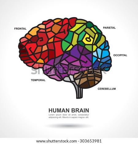 Mosaic Human Brain Art with text on gray gradient background. Parts of the Human Brain.
