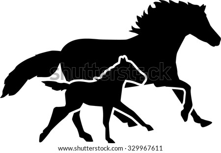 Mother horse and foal running