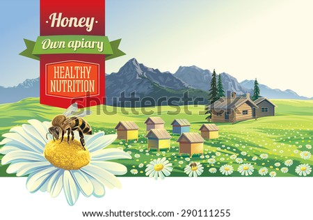Mountain landscape with a bee and apiary, village in background - stock vector