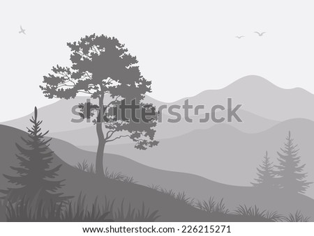 Mountain landscape with pine and fir trees and birds, grey silhouettes. Vector - stock vector