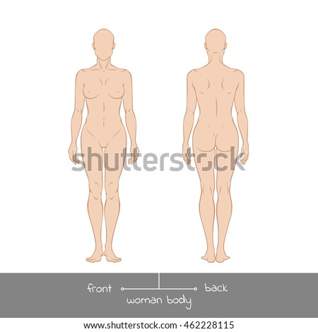 Human Body Man Woman Front Back Stock Vector 559877527 ...