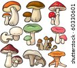 Mushroom forest set on a white background - stock vector