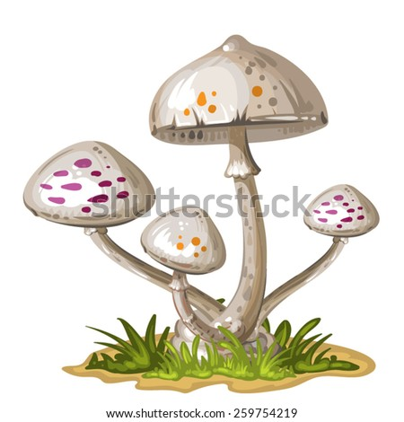 Mushroom in the grass - stock vector