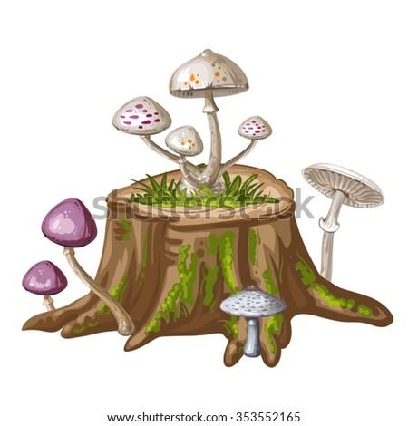 Mushroom on cut tree trunk - stock vector