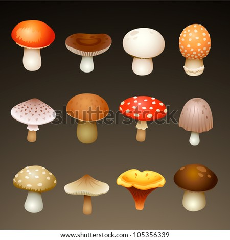mushrooms - stock vector