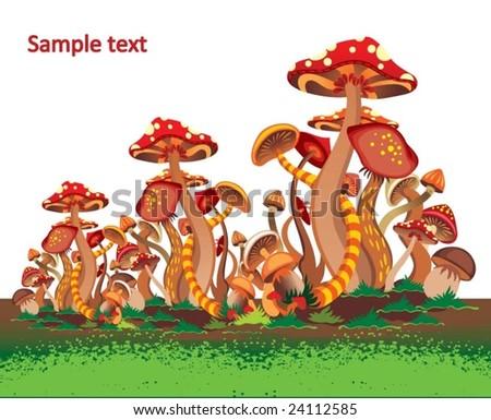 mushrooms - stock vector