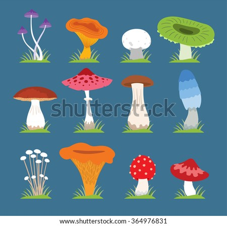 Mushrooms vector illustration set. Different types of mushrooms isolated on blue background. Nature mushrooms for cook food and poisonous mushrooms flat style - stock vector