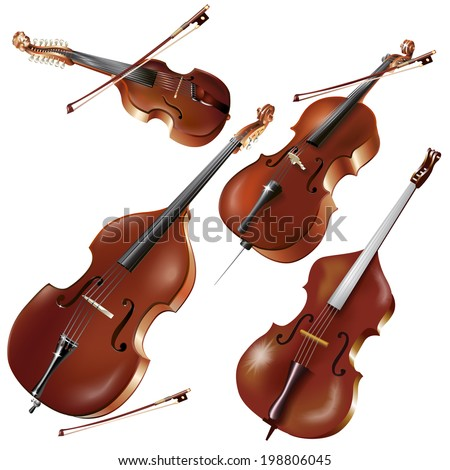 Musical background series. Set of string instruments, isolated on white background . Vector illustration  - stock vector
