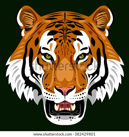 Muzzle of a tiger - stock vector