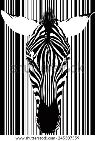 Muzzle zebra as a barcode from the front. Isolated on white - stock vector