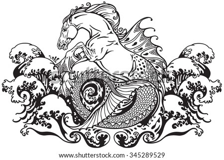 mythological seahorse black and white illustration