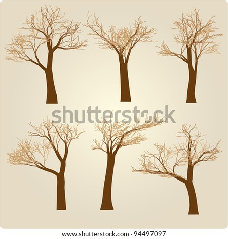 Naked set of trees in a winter windy appearance - stock vector