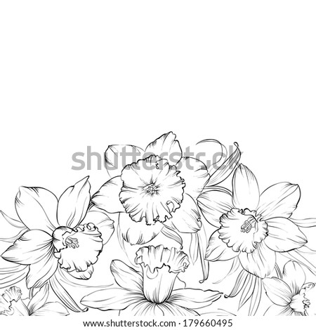 Narcissus flowers isolated on white background. Vector illustration. - stock vector