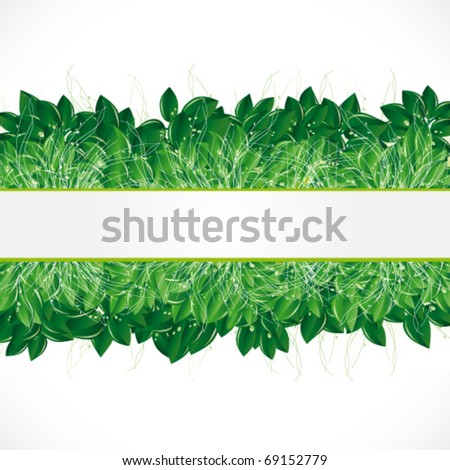Natural background with green leaves, grass and dew. - stock vector