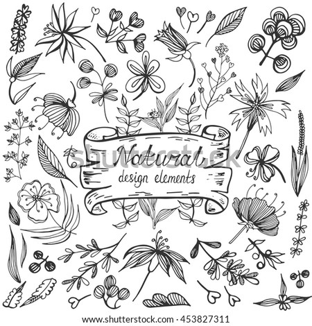 Natural design elements big collection. Hand drawn vector illustration. Set of vintage flowers and leaves in doodle style.