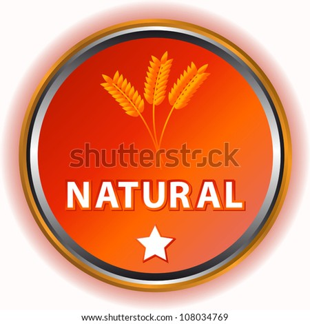 Natural icon with a symbol of an ear and a star - stock vector