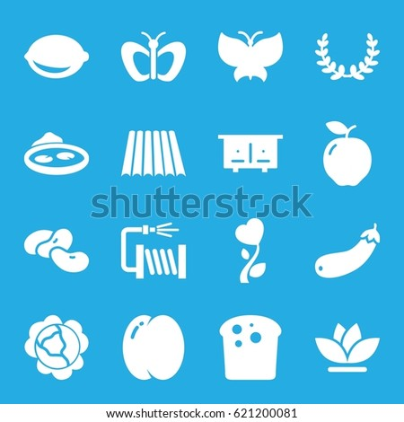 Natural icons set. set of 16 natural filled icons such as field, apple, peach, cabbage, bean, beehouse, butterfly, water hose, flower, pond, lemon, aubergine, heart flower