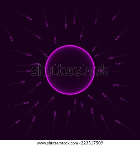 Natural insemination: sperm fertilizing egg cell, vector purple illustration - stock vector