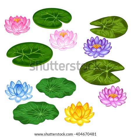 Natural set of stylized lotus flowers and leaves. Objects for decoration, design on advertising booklets, banners, flayers.