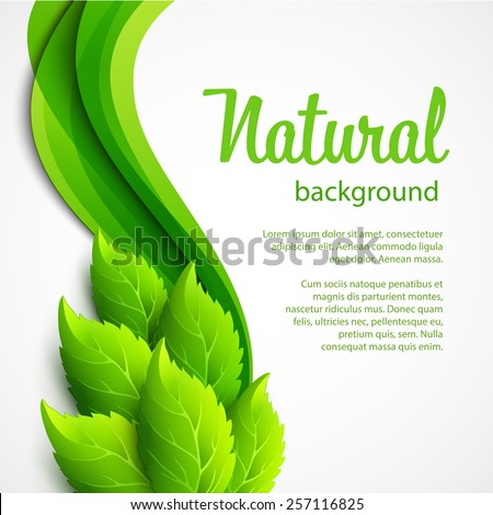 Natural vector background with green spring leaves  - stock vector